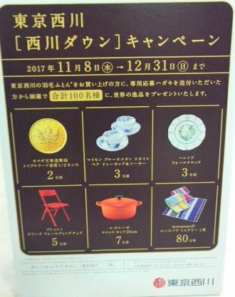 東京西川「西川ダウン」キャンペーン